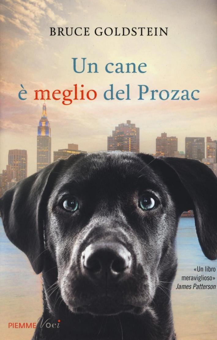 Un cane è meglio del Prozac.