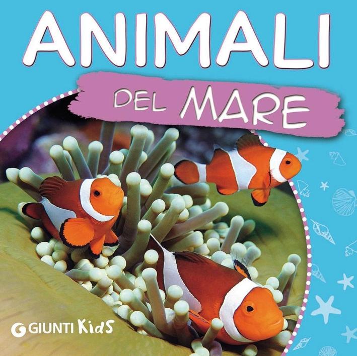 Animali del mare. Ecco gli animali.