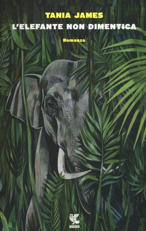 L'elefante non dimentica.