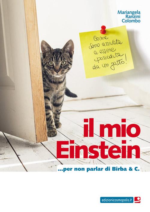 Il Mio Einstein... Per non Parlar di Birba & C