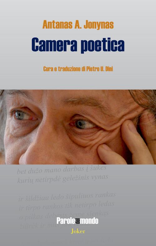 Camera poetica. Ediz. multilingue