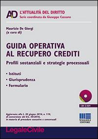Guida operativa al recupero crediti