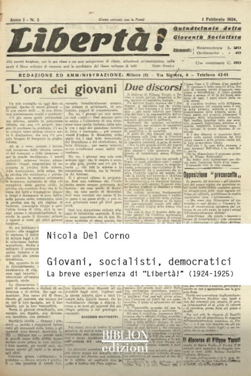 Giovani, socialisti, democratici. La breve esperienza di