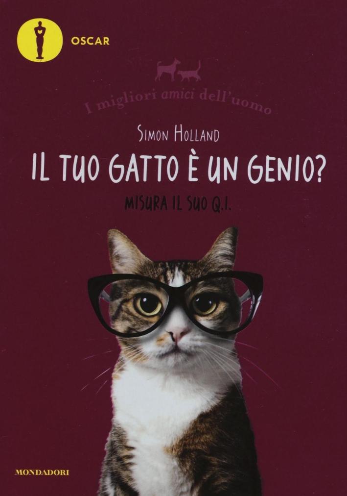 Il tuo gatto è un genio (incompreso)?