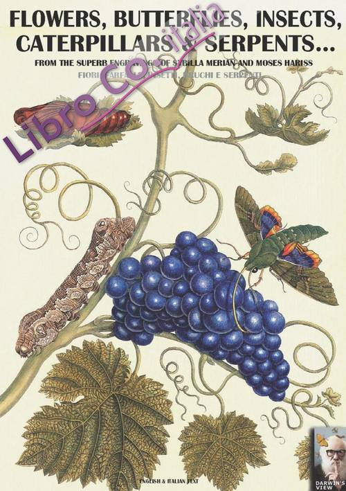 Flowers, butterflies, insects, caterpillars & serpents... From the superb engravings of Sybilla Merian and Moses Hariss. Testo italiano a fronte.