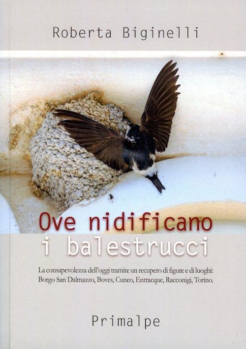 Ove nidificano i balestrucci. La consapevolezza dell'oggi tramite un recupero di figure e di luoghi: Borgo san Dalmazzo, Boves, Cuneo, Entracque, Racconigi, Torino.