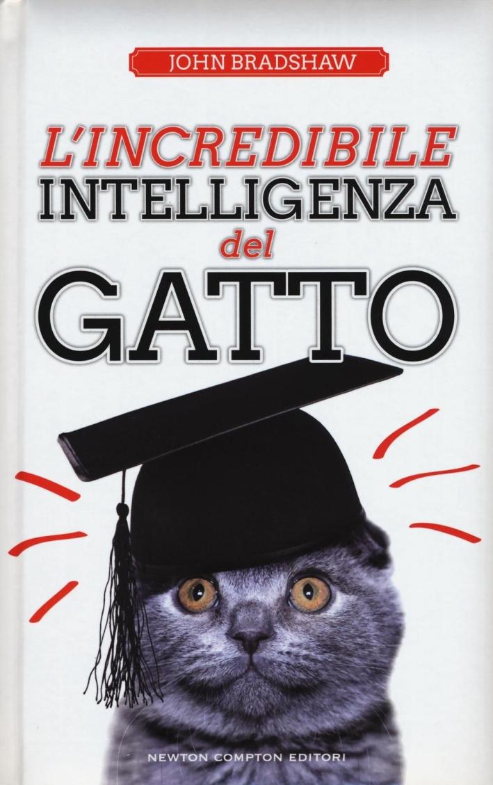 L'incredibile intelligenza del gatto.