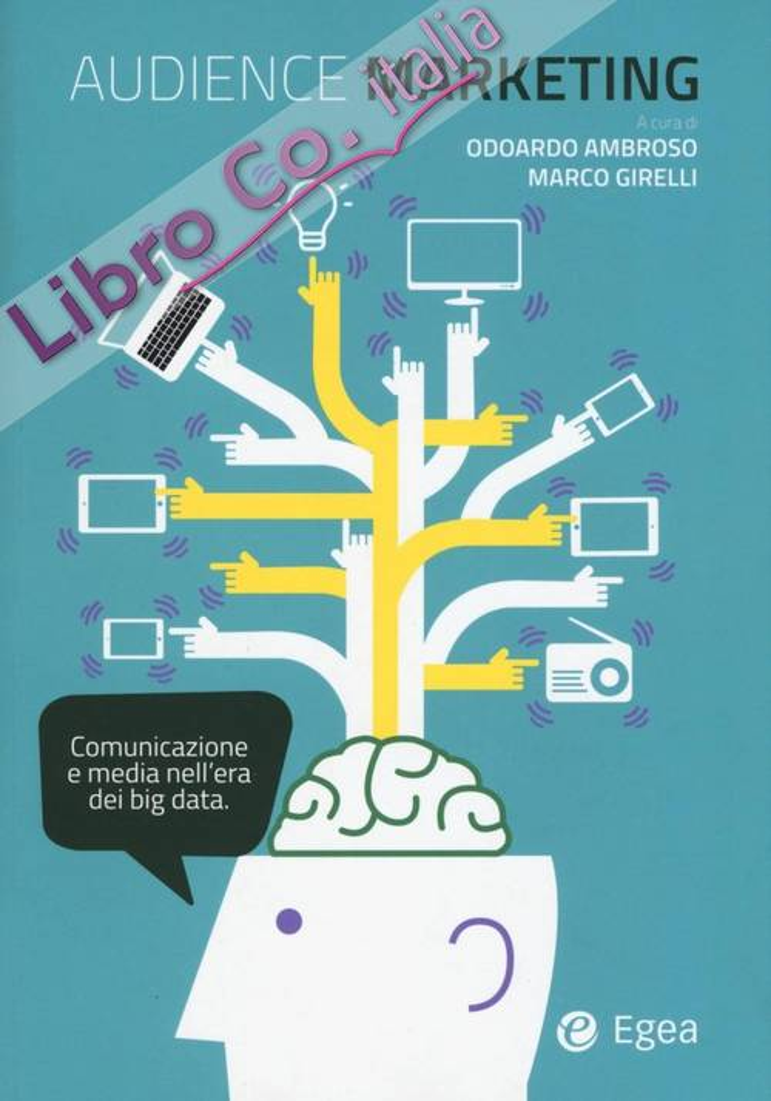 Audience marketing. Media e consumatori nell'era dei Big Data.