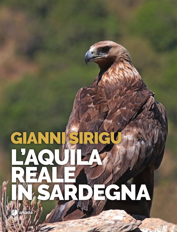 L'aquila reale in Sardegna.