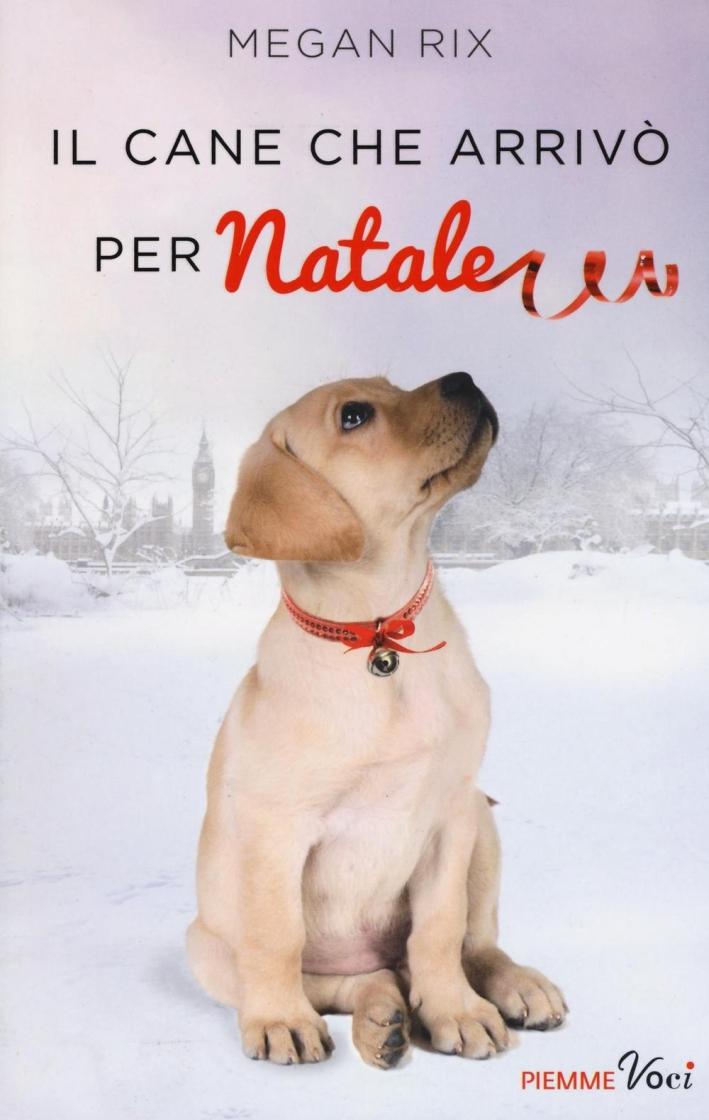 Il cane che arrivò per Natale.