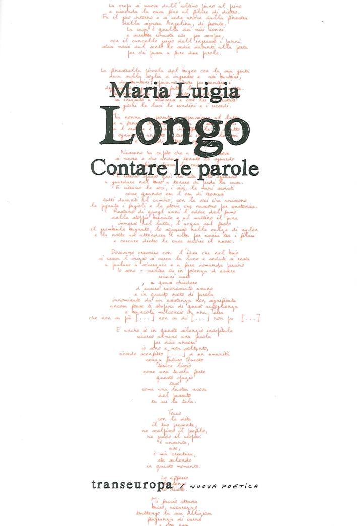 Maria Luigia Longo. Contare le parole.