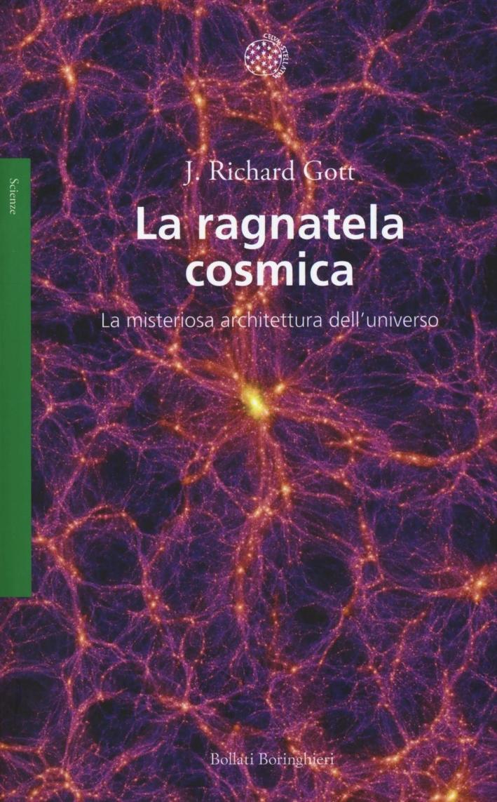 La ragnatela cosmica. La misteriosa architettura dell'universo.