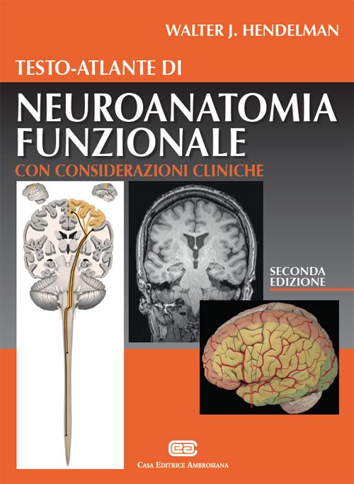 Testo-atlante di neuroanatomia funzionale. Con considerazioni cliniche