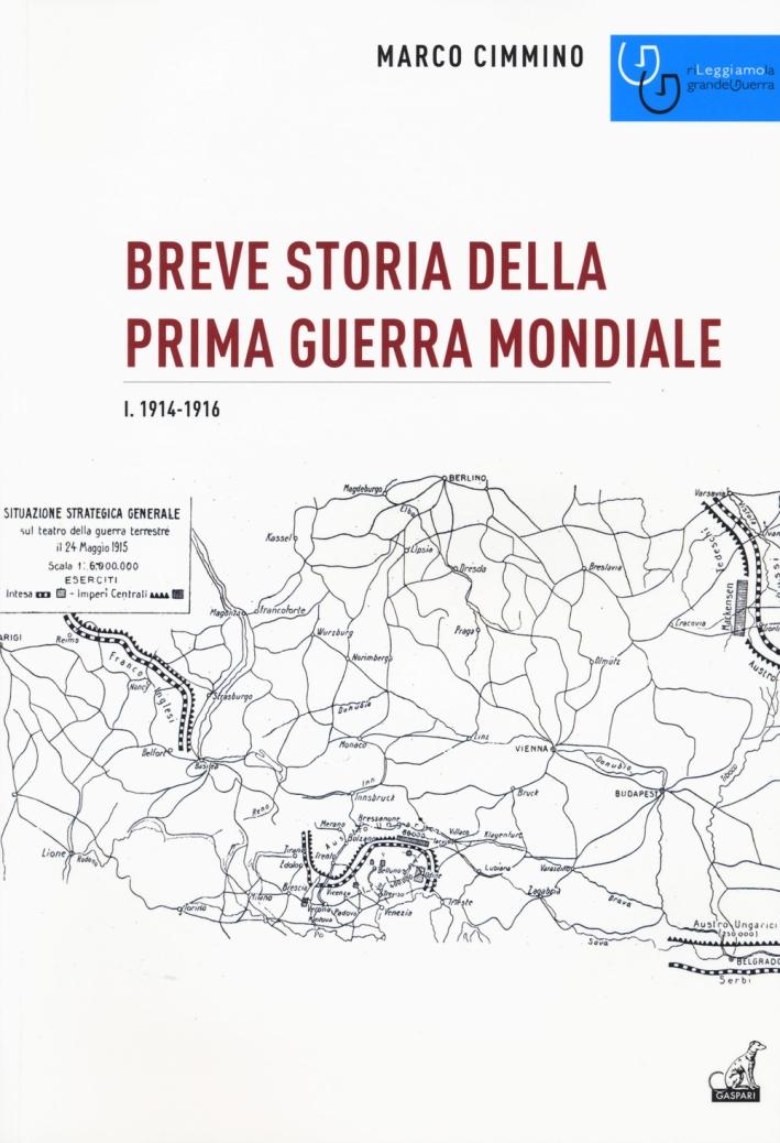 Breve Storia non Popolare della Prima Guerra Mondiale Vol. I. 1914-1916.