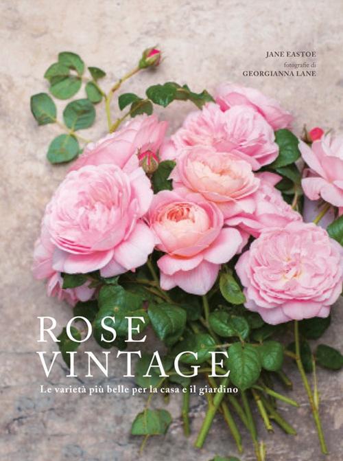 Rose vintage. Le varietà più belle per la casa e il giardino.