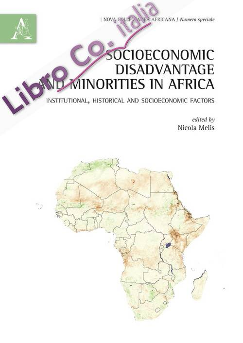 Socioeconomic disadvantage and minorities in Africa. Institutional, historical and socioeconomic factors