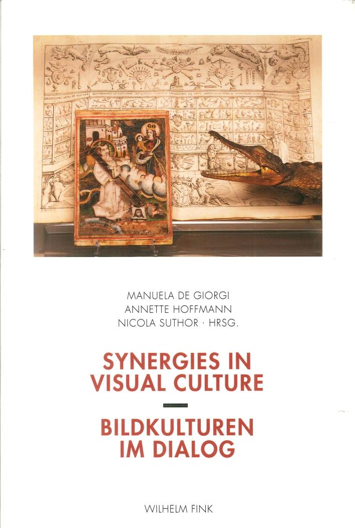 Synergies in Visual Culture. Bildkulturen Im Dialog.
