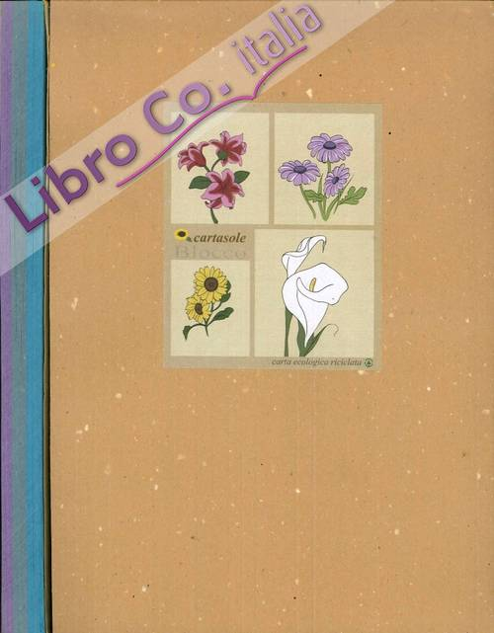 Cartasole Blocco Multicolor: Azzurro, Celeste, Viola. 21x29
