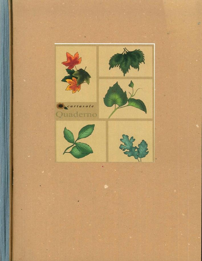 Cartasole Quaderno Interno Azzurro 15x21