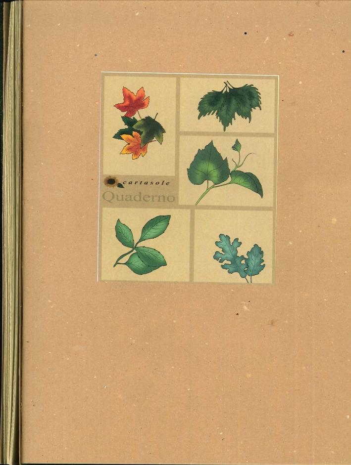 Cartasole Quaderno Interno Avana 15x21.