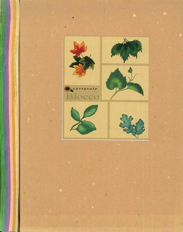 Cartasole Blocco Multicolor: Avana, Giallo, Rosa, Lilla, Celeste, Verde 15x21