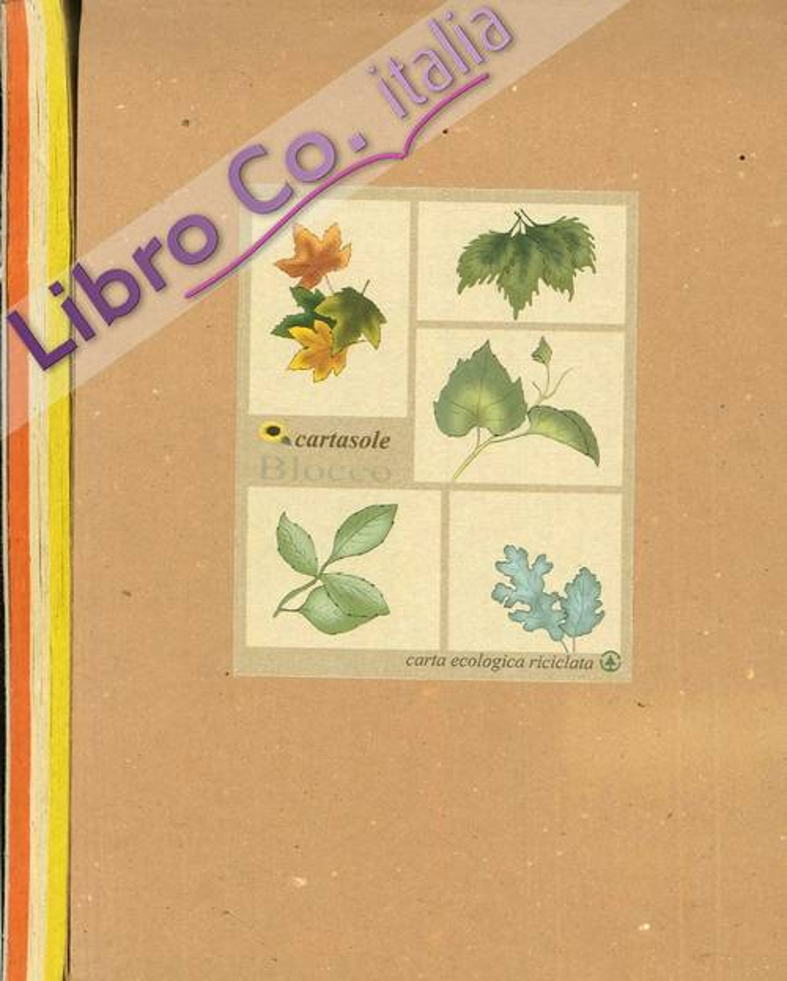 Cartasole Blocco Multicolor: Giallo, Avana, Arancione 15x21.