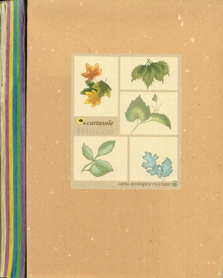 Cartasole Blocco Multicolor: Avana, Lilla, Giallo, Azzurro, Verde, Viola. 15x21.
