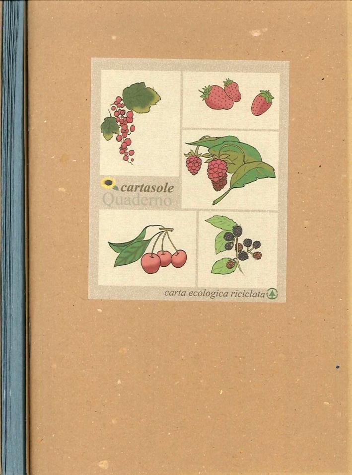 Cartasole Quaderno Interno Azzurro 9,5x15,5