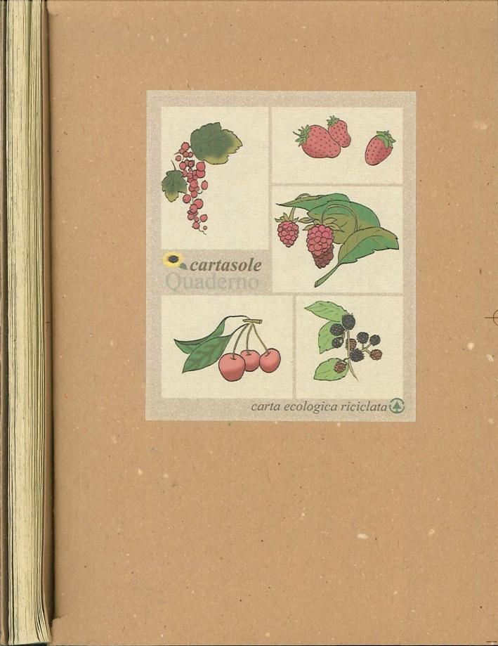 Cartasole Quaderno Interno Avana 9,5x15,5.