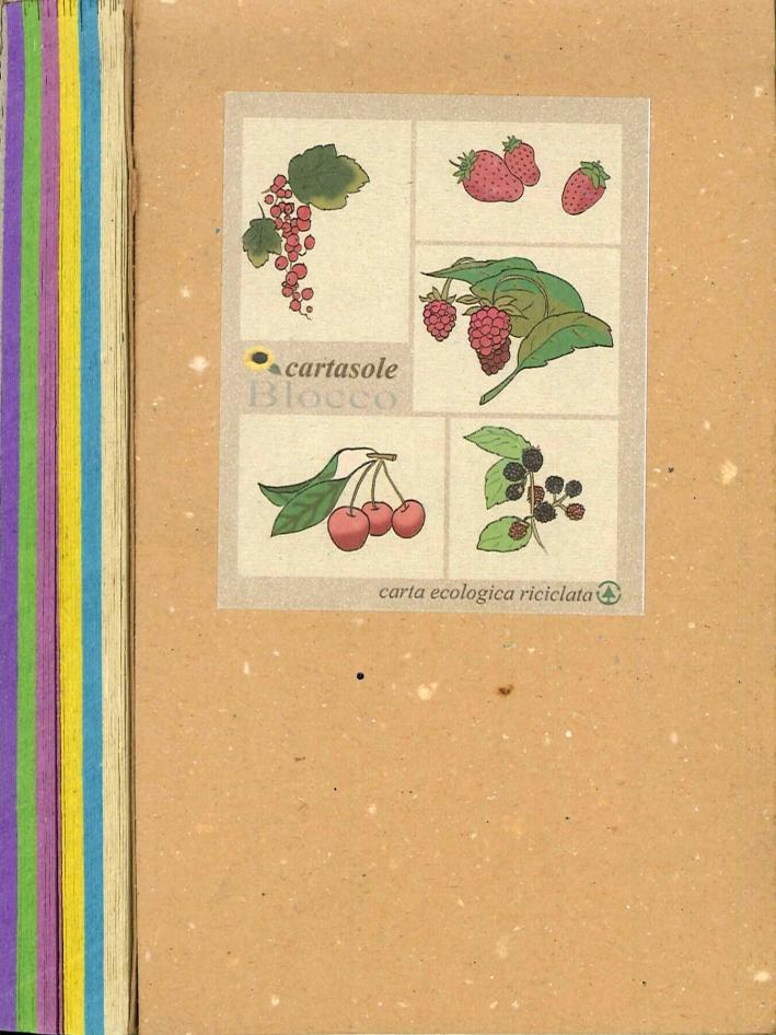 Cartasole Blocco Multicolore: Avana, Azzurro, Giallo, Lilla, Verde, Viola 9,5x15,5.