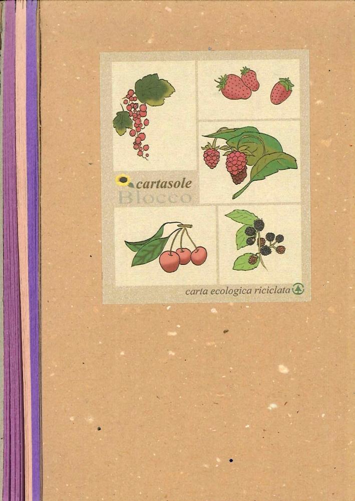Cartasole Blocco Multicolore: Viola, Rosa, Lilla. 9,5x15,5