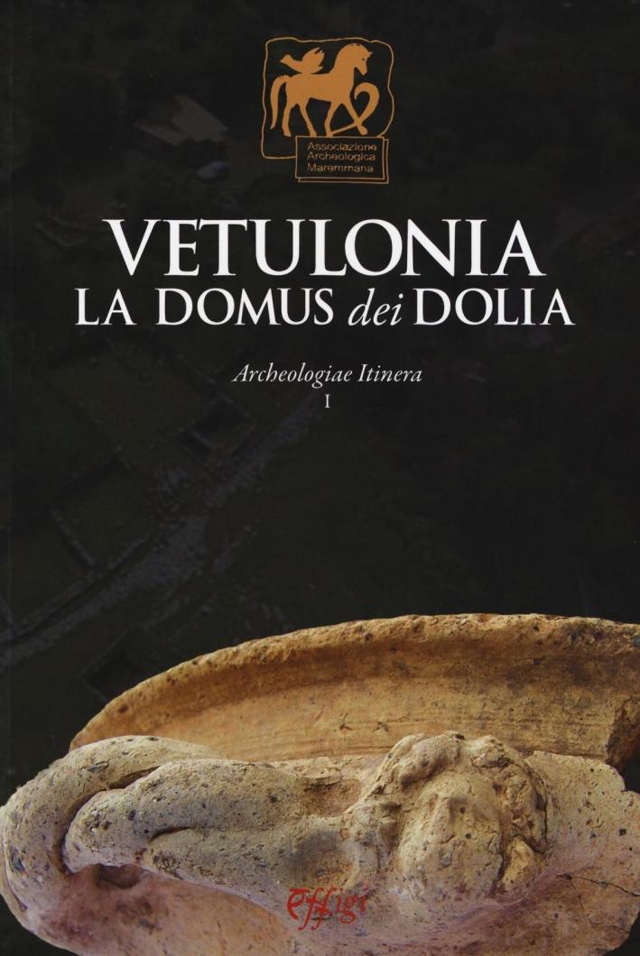 Vetulonia. La Domus dei Dolia.