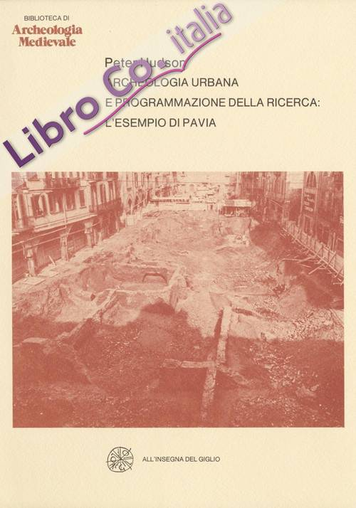 Archeologia urbana e programmazione della ricerca. L'esempio di Pavia.