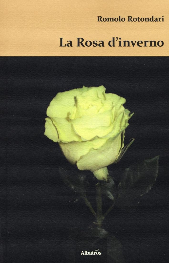 La rosa d'inverno.