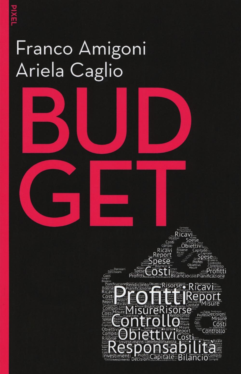 Budget. Con Contenuto digitale per download e accesso on line