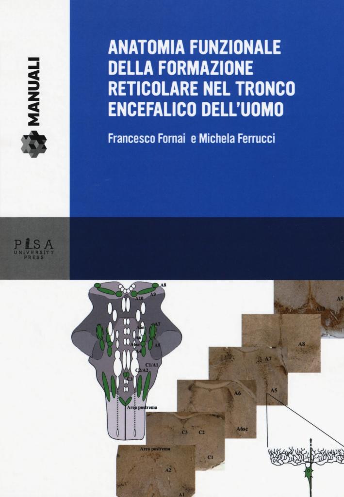Anatomia funzionale della formazione reticolare nel...