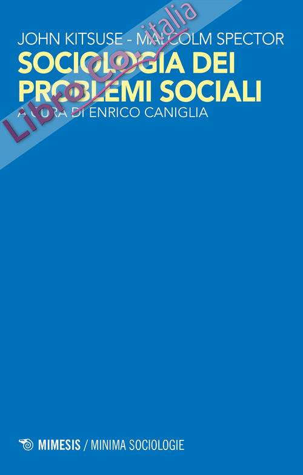 La costruzione dei problemi sociali