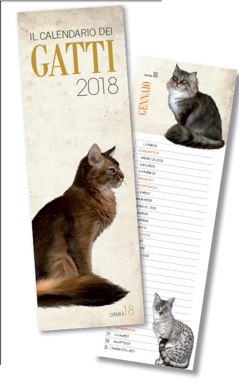 Calendario 2018 Gatti