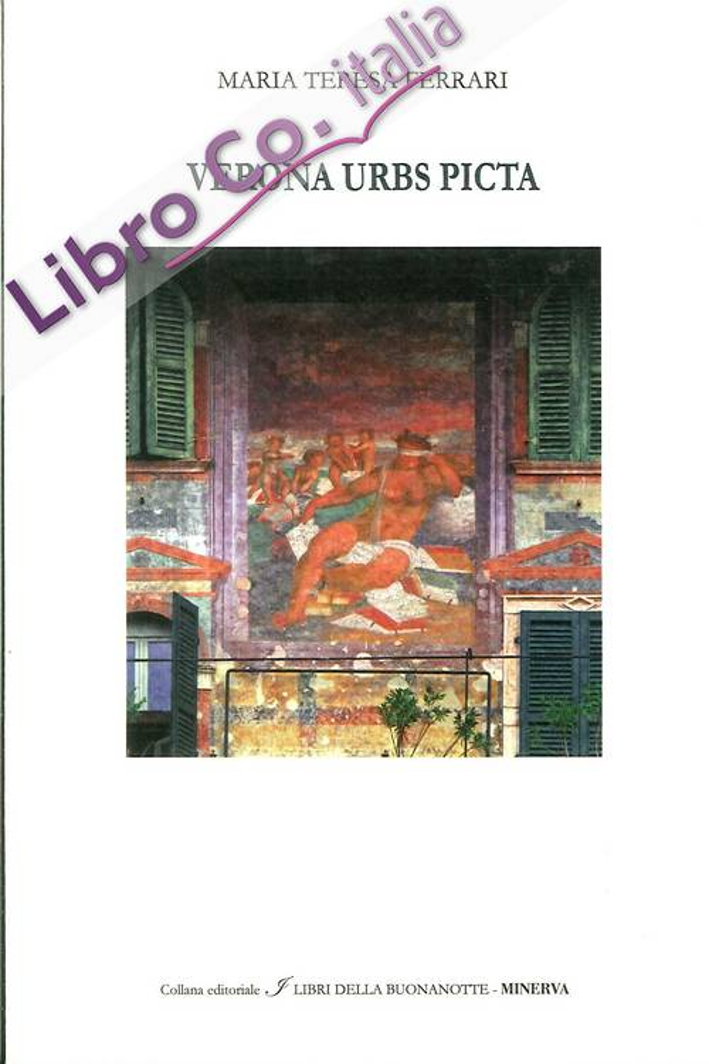 Verona urbs picta