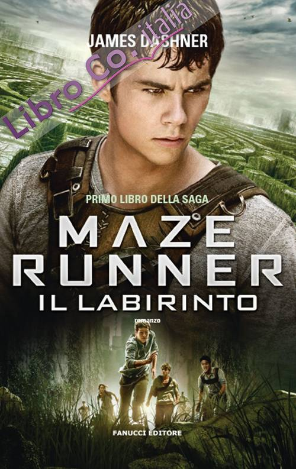 Il labirinto. Maze Runner. Vol. 1