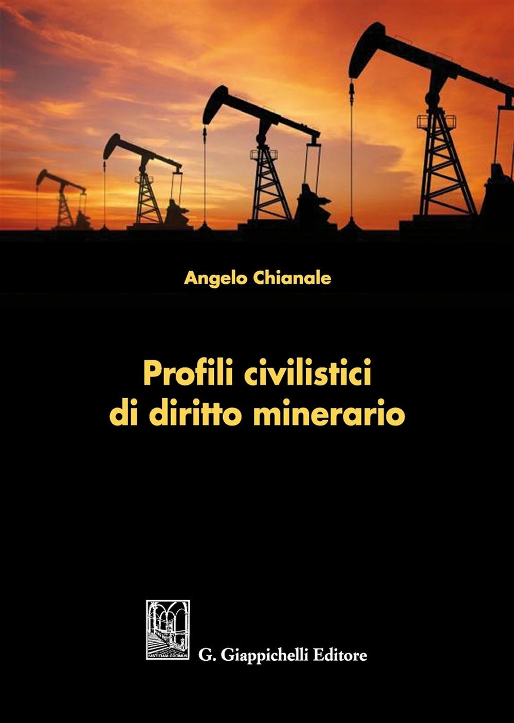Profili civilistici di diritto minerario