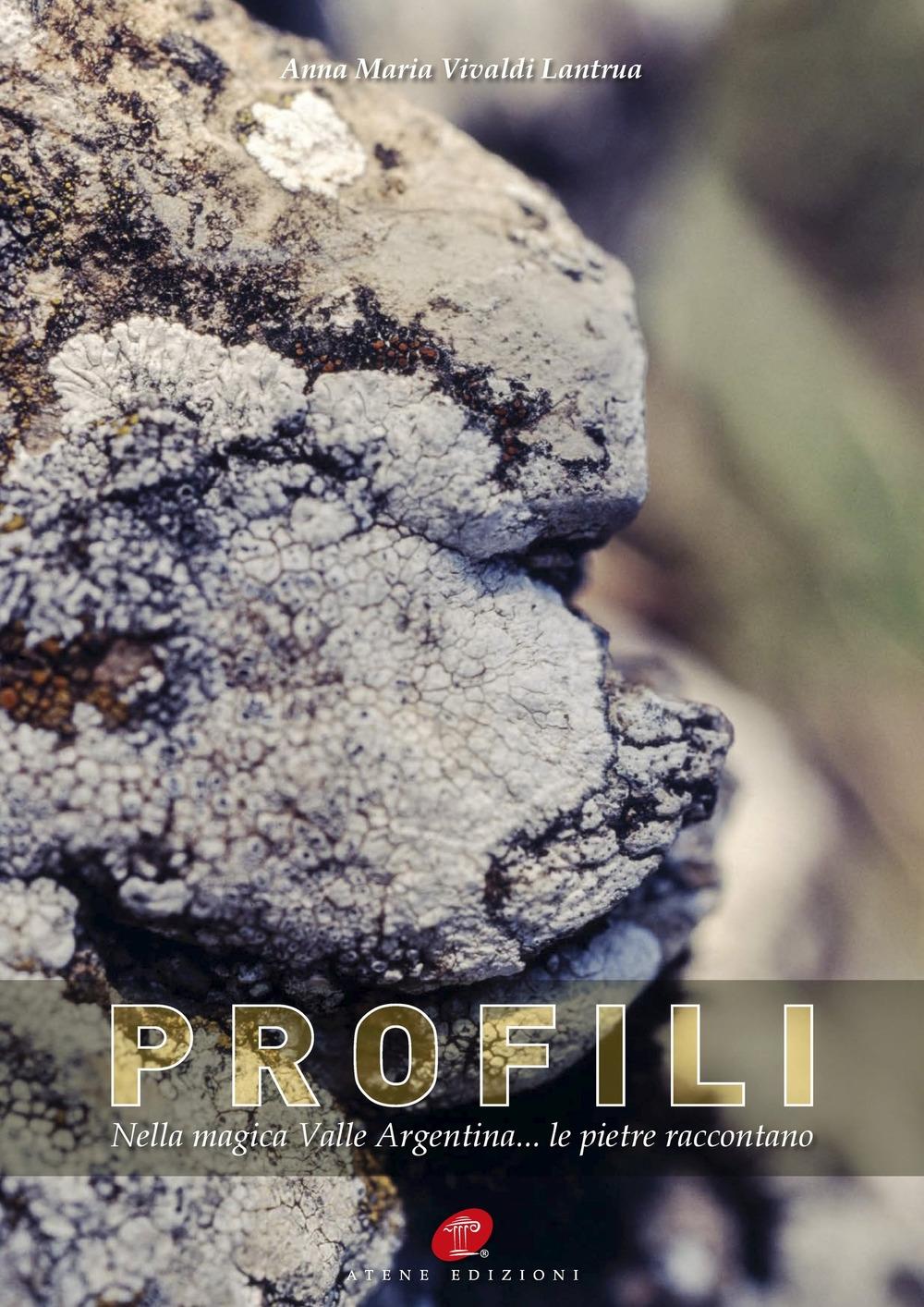 Profili. Nella magica Valle Argentina... le pietre raccontano. Ediz. illustrata