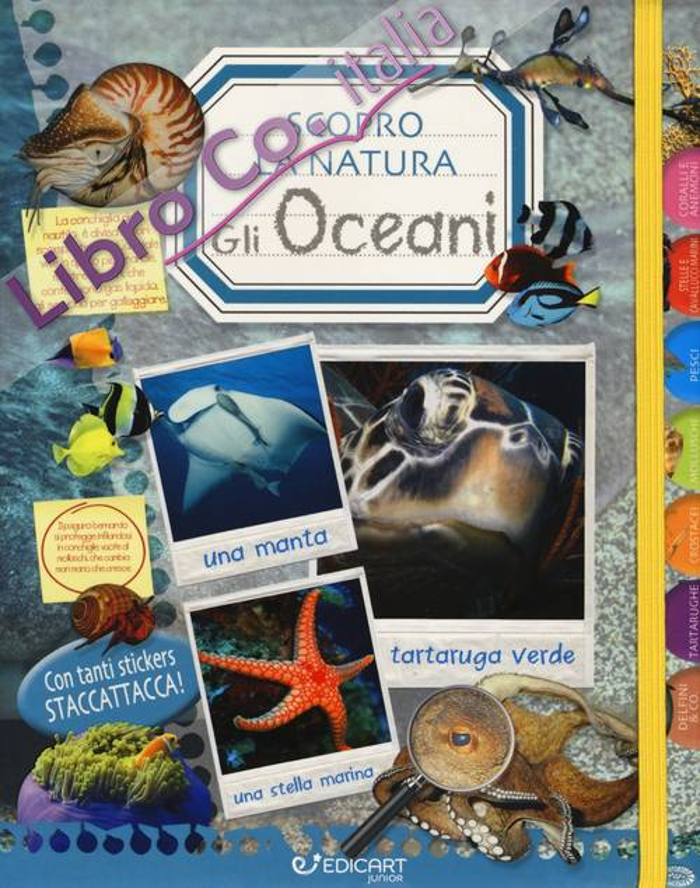 Gli oceani. Scopro la natura. Con adesivi