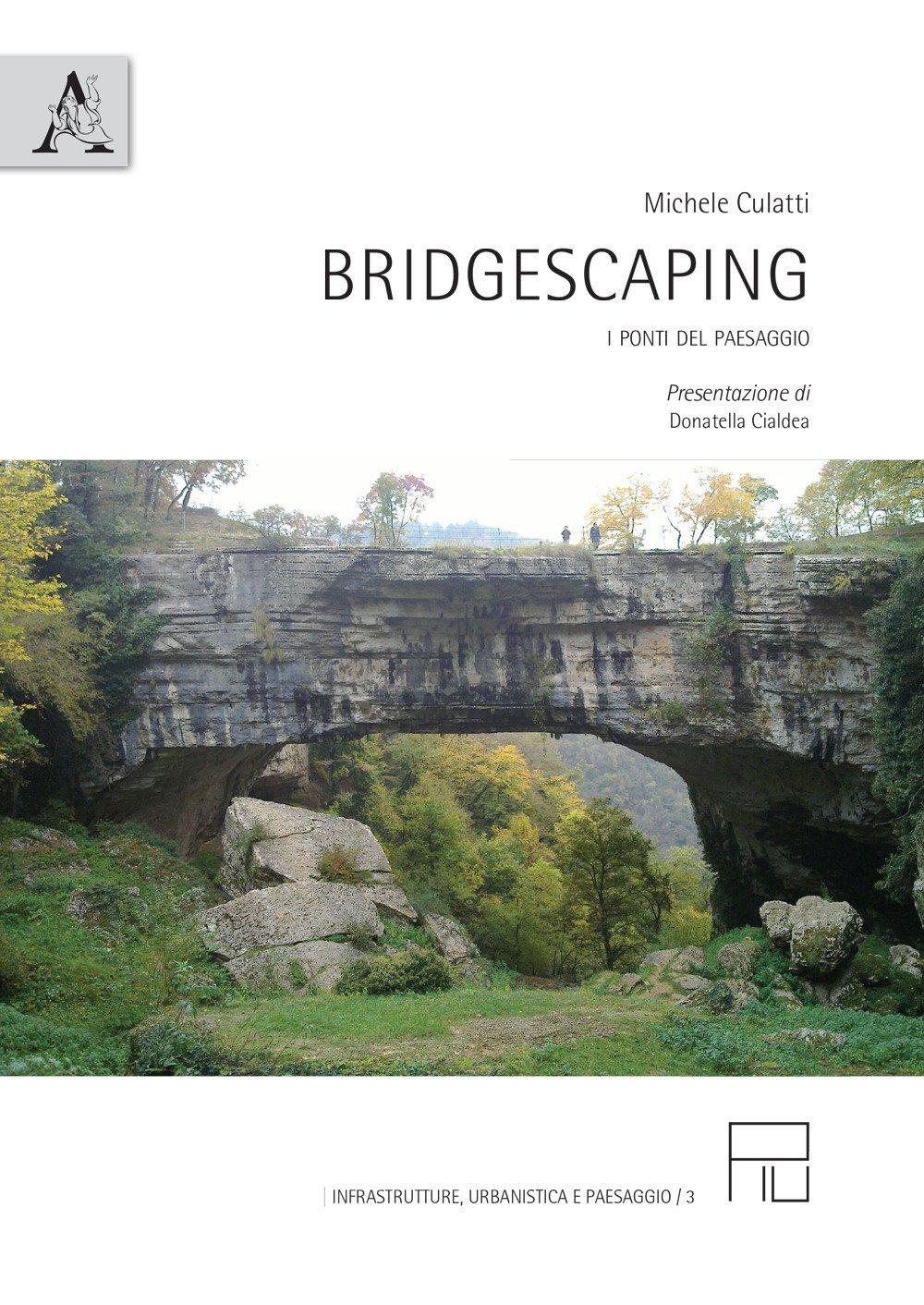 Bridgescaping. I ponti del paesaggio