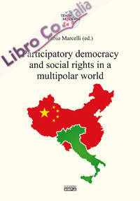 Participatory democracy and social rights in a multipolar world