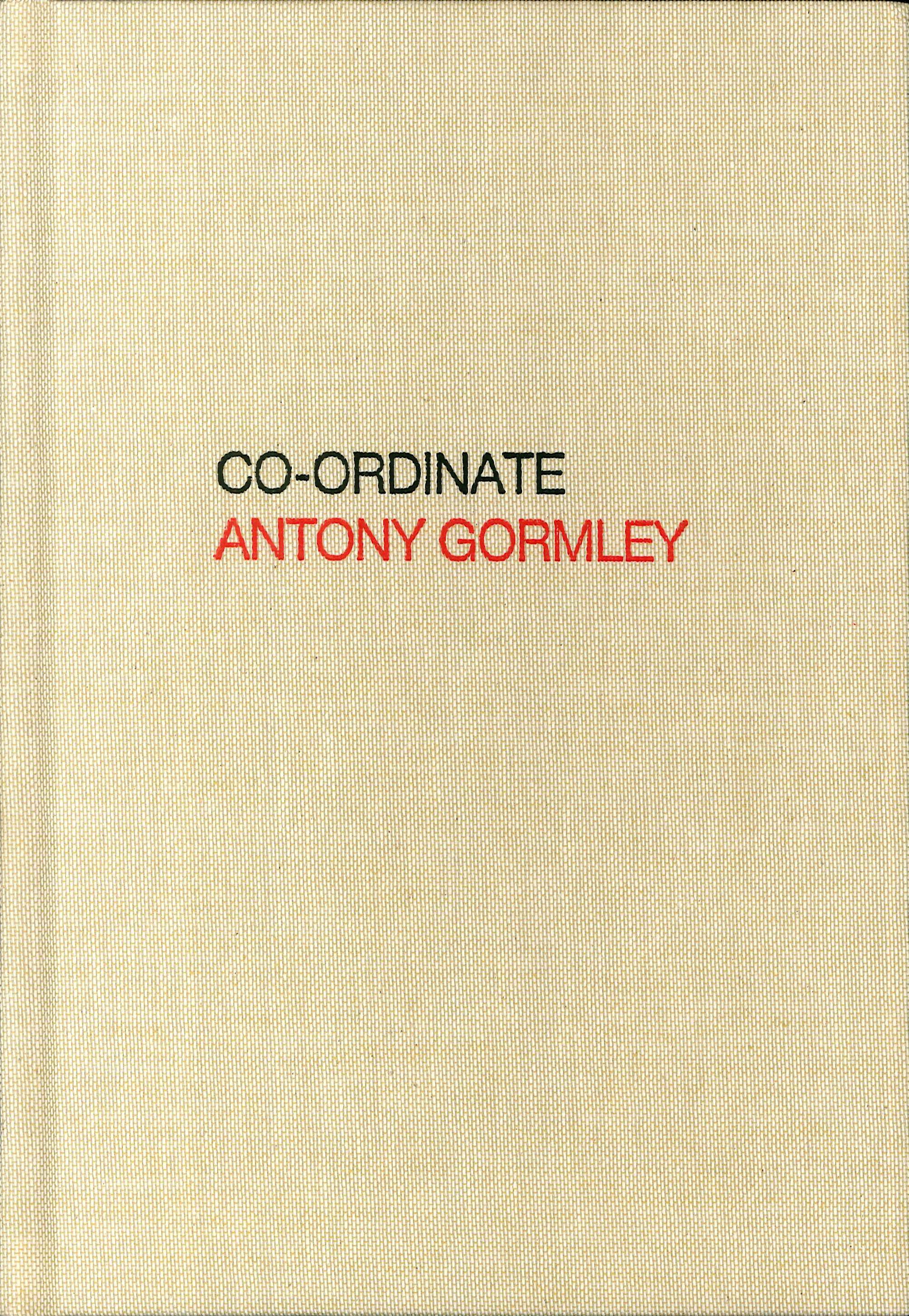 Antony Gormley. Co-ordinate.