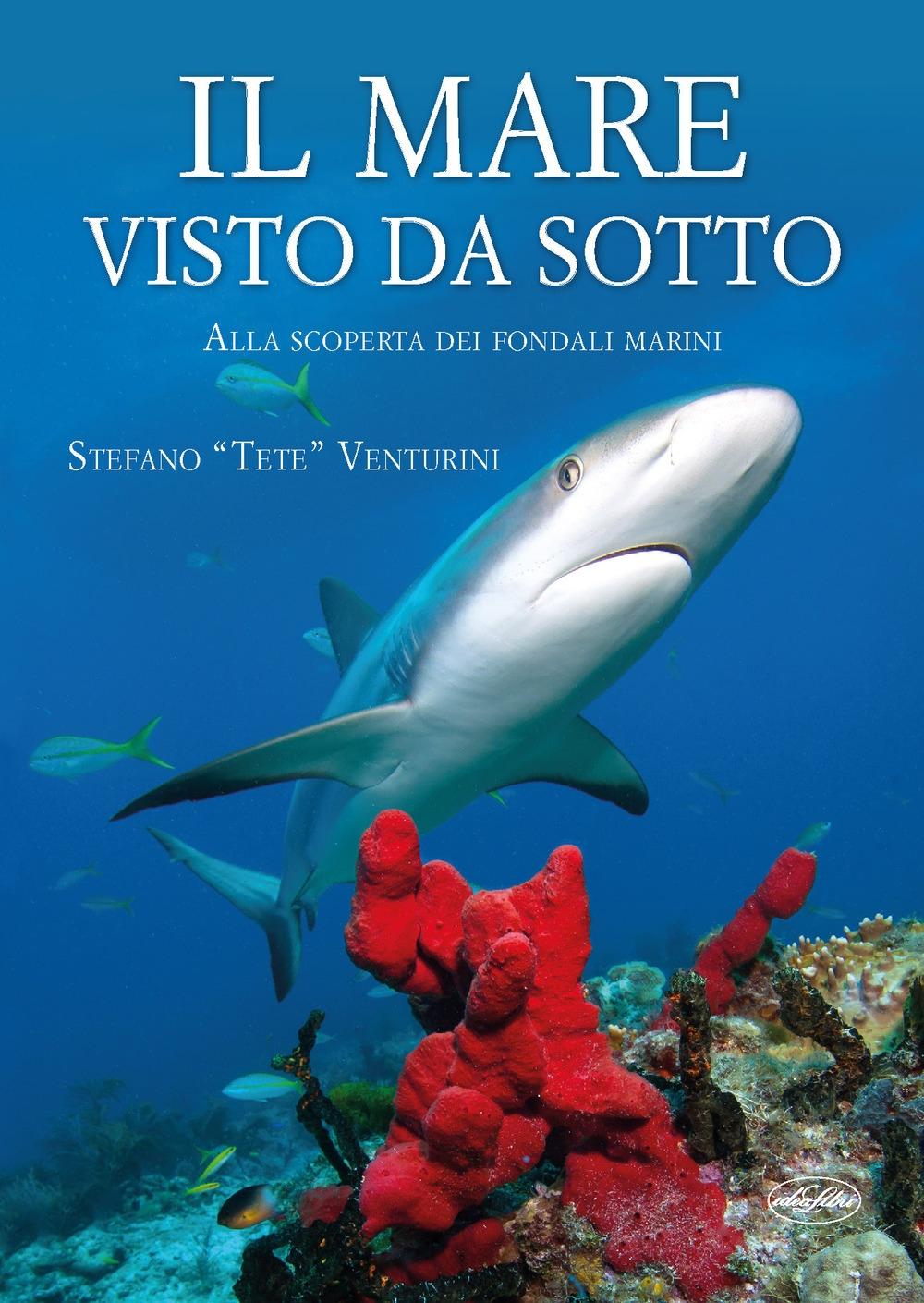 9788862622554 Venturini Stefano Tete 2010 Il Mare Visto Da Sotto