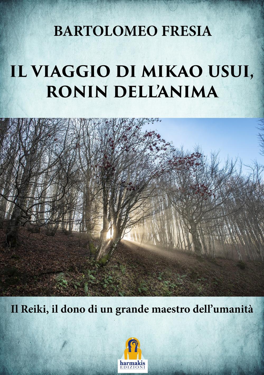 Il Viaggio di Mikao Usui, Ronin Dell'Anima
