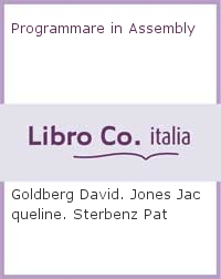 Programmare in Assembly.