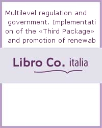 Multilevel regulation and government. Implementation of the